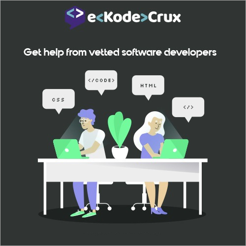 Ekodecrux IT Project Support Services