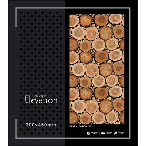 Living Room High- Depth Elevation Tile