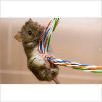 Plastic Anti Rodent