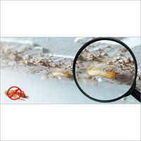 Plastic Anti Termite