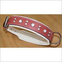 Fancy Dog Collar