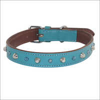Colorful Leather Dog Collar