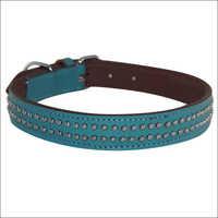Decorative Sky Blue Dog Collar