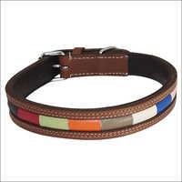 Multicolor Leather Dog Collar