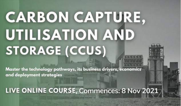 Carbon Capture, Utilisation and Storage (CCUS) Live Online Course