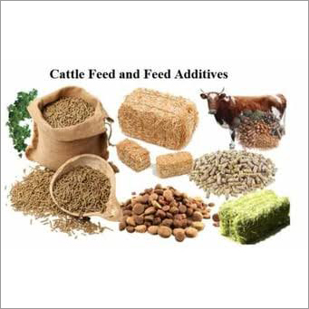 Cattle Feed and Feed Additives