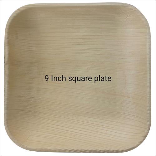 9 Inch Biodegradable Square Plate