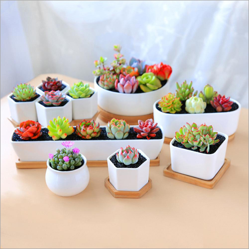 Ceramic Mini Flower Pot