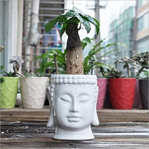 Ceramic Large Buddha Flower Pot