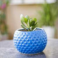 Handmade Ceramic Flower Pot