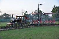 Family Track Train