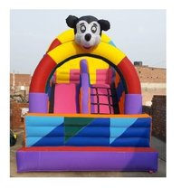 Inflatable Ball And Mickey Bounce
