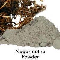 Nagermotha Dry Extracy