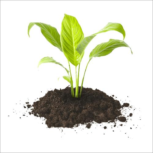 Potting Soil Fertilizer