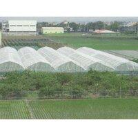 Green Agro Shade Net
