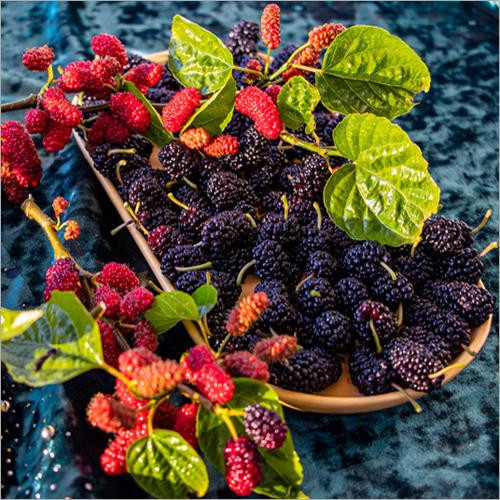 Berries .