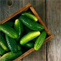 Cucumber .
