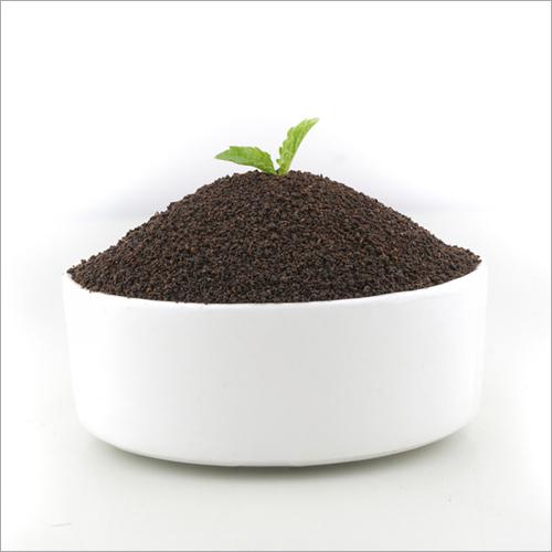 Assam Indian Black Tea