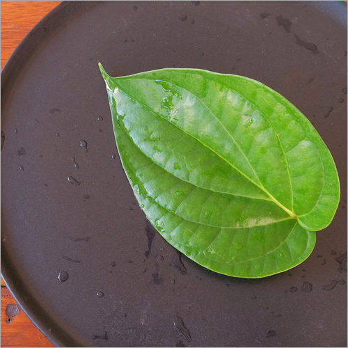 Betal Leaves