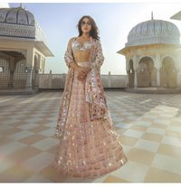 FANCY SIQUENCE CHOLI COLLECTION