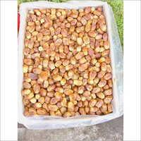 Dry Zahedi Wet Dates