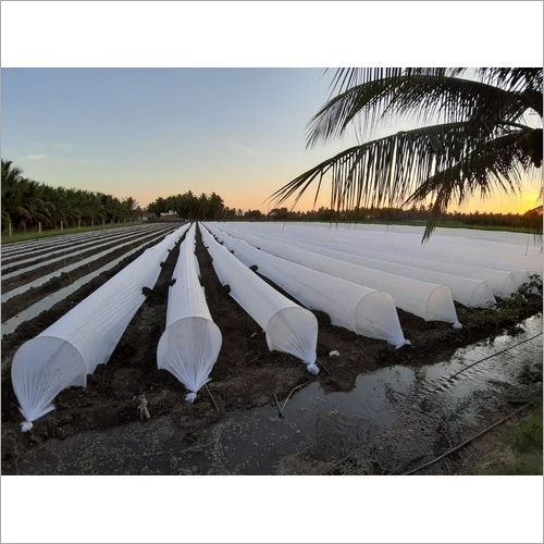 Agriculture Non Woven Crop Cover
