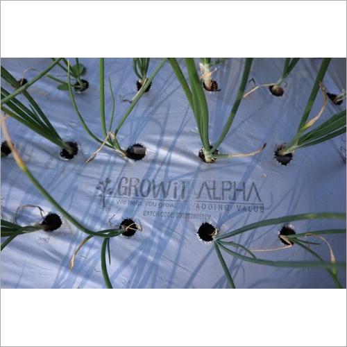 Onion and Garlic Plastic Mulch Film