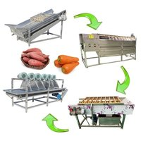 Full Automatic Sweet Potato Washing Drying Line