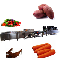 Automatic Sweet Potato Spray Cleaning Vibration Drain Production Line Sweet Potato Washing Air Drying Processing Line