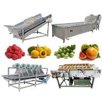 Full Automatic Mandarin Citrus Tangerine Washing Waxing Drying Packing Line