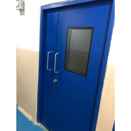 Clean Room Door