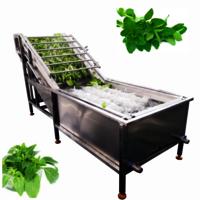 Automatic Bubble herbs washer oregano washing machine basil cleaning machine