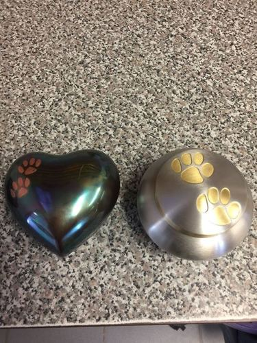 BRASS ODYSSEY WITH HEART SHAPED PET PAW CREMATION URN
