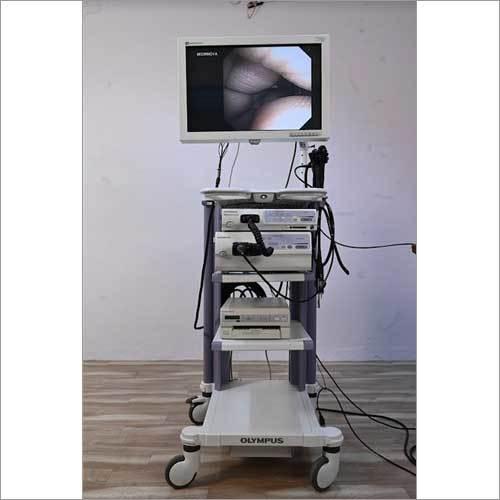 Flexible Endoscopy