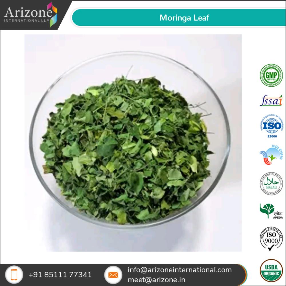 Moringa Leaf / Moringa Oleifera Leaves
