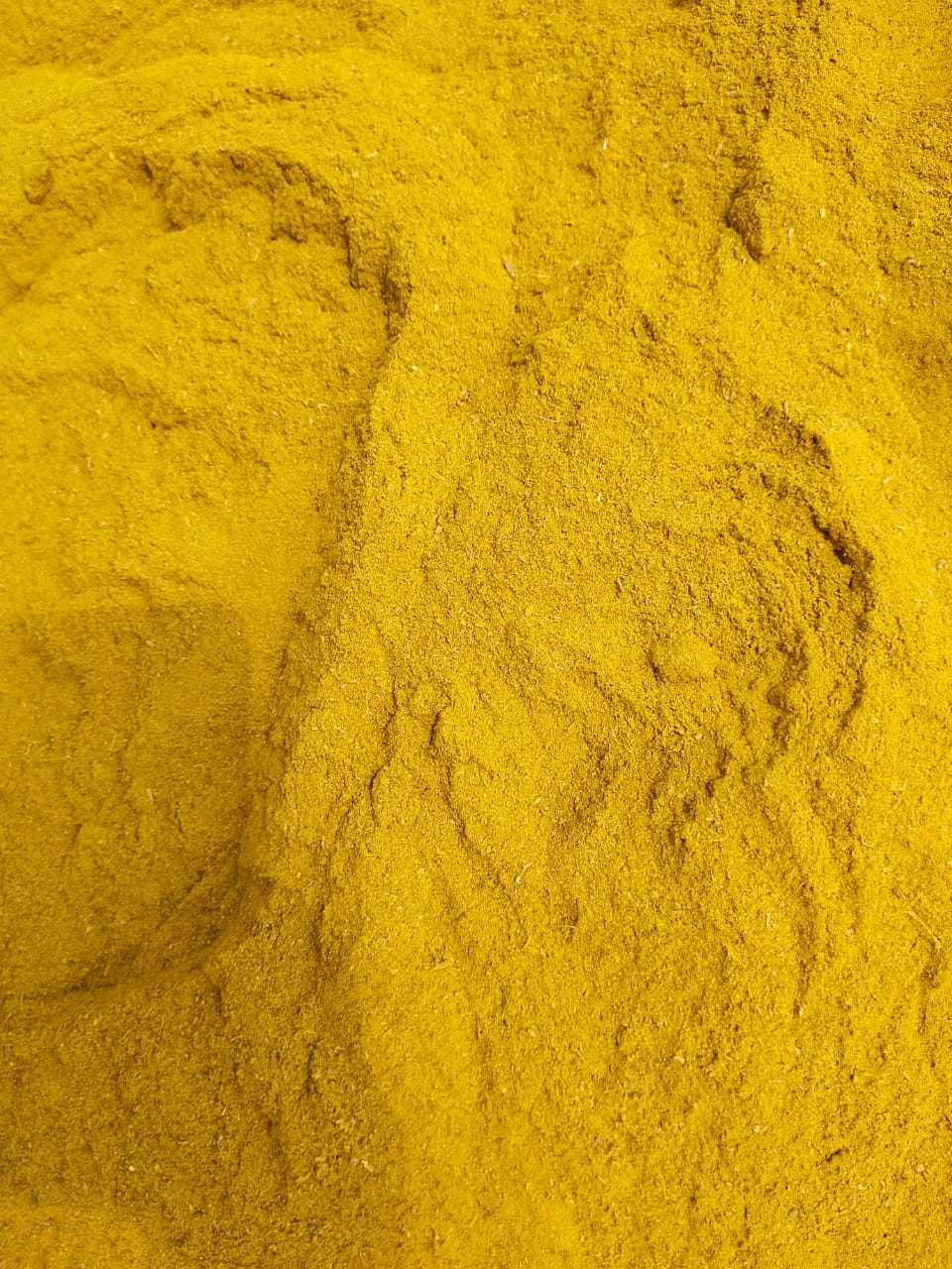 turmeric spent powder for animal use