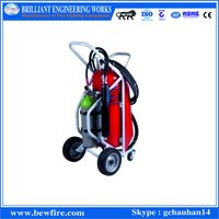Water Mist Portable Packpack Type