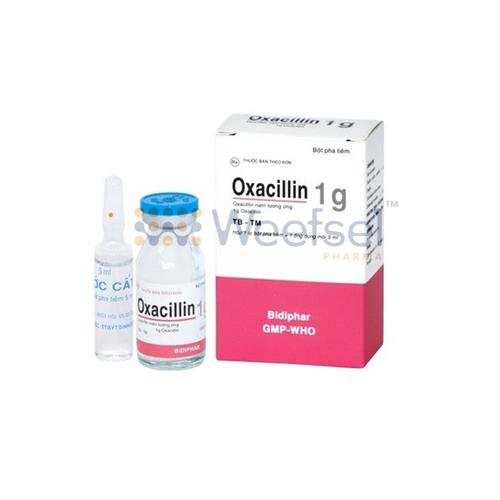Oxacillin Injection