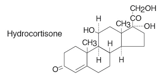 Hydrocortisone Sodium Succinate