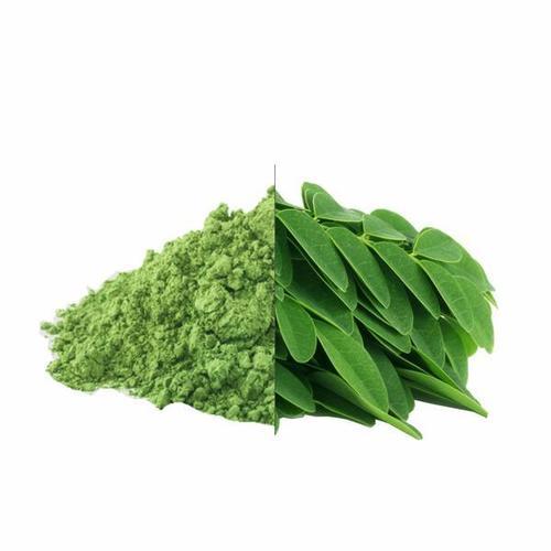 Moringa Powder/ Organic Moringa Powder