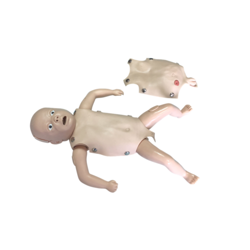 ConXport Advanced Newborn Nursing Model