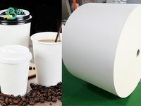 Poly Coated Cupstock Paper