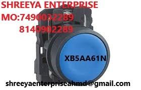 PUSH BUTTON XB5AA61N