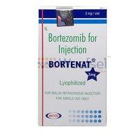 Bortenat 2 (Bortezomib 2mg)