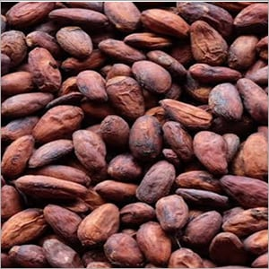 Brown Cocoa Beans
