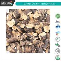 Curculigo Orchioides Root / Black Musli Root