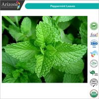 Dried Peppermint Leaves / Dried Pudina Leaves