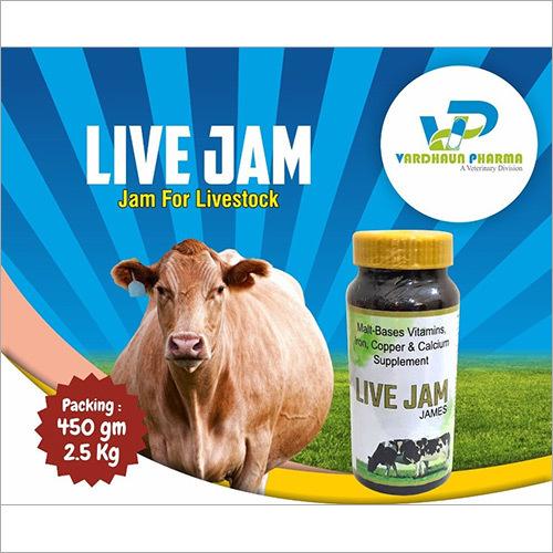 Live Jam