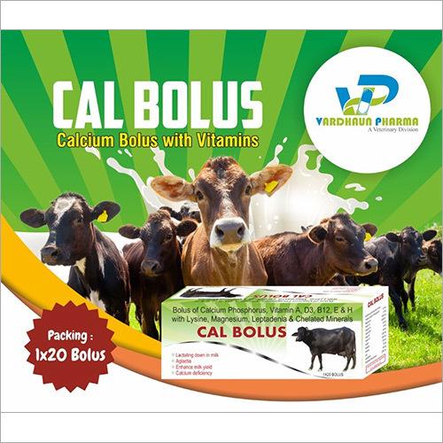 Cal Bolus