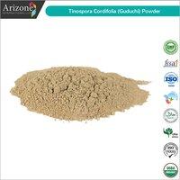 Giloy Powder / Tinospora cordifolia